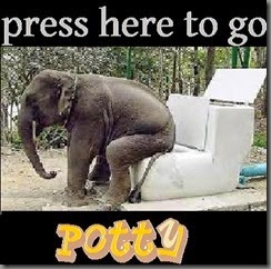 potty button