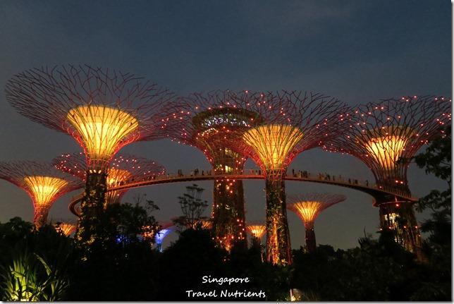 新加坡超級樹燈光秀 (21)