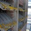 12. Galmborden met mos-aangroei.JPG