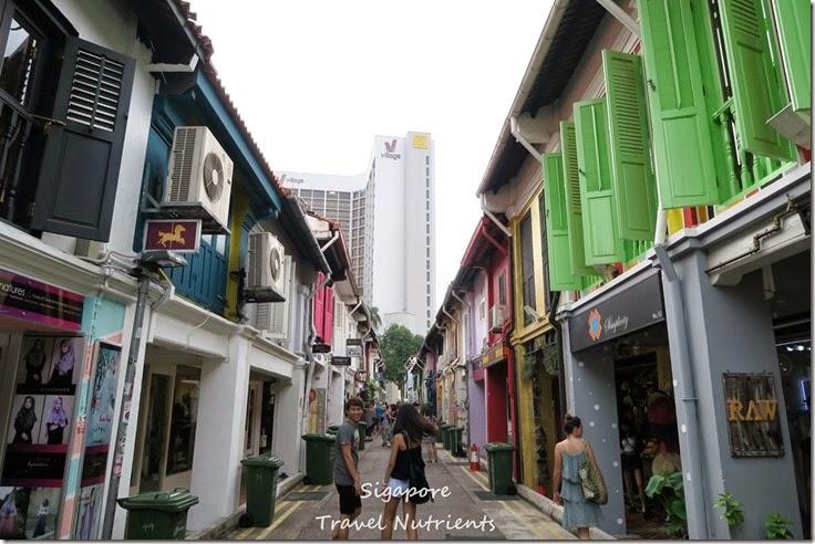 新加坡 哈芝巷 (33)
