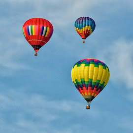 Up Up and Away! by Betty Arnold - Transportation Other ( transportation, hot air balloons, colorful sport,  )