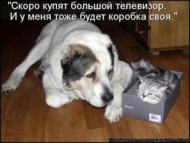 http://lh3.googleusercontent.com/--9Yd_6oddHA/Th1c3BrhGuI/AAAAAAAAB8A/8463bGAta7I/s640/677136.jpg