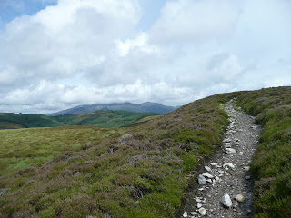 Path back to Whinlatter Forest