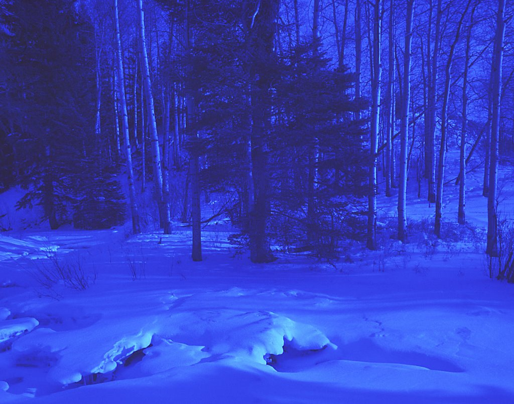 barnes - Snow%252520Creek.jpg