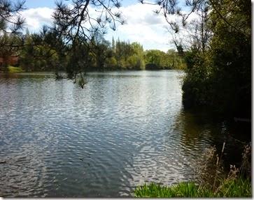 10 lymm lake 1