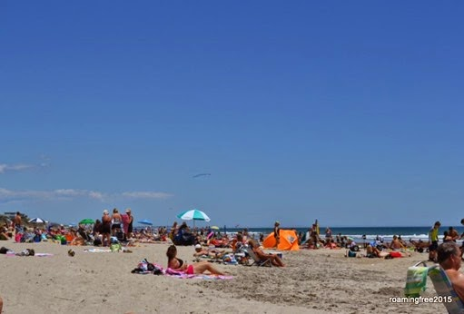 Busy day at the beach