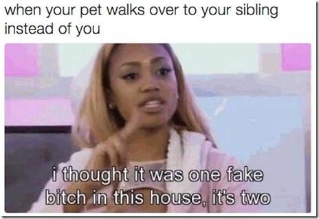 siblings-problems-007