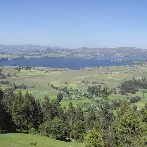 Fertile land is farmed in plots