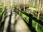 Bike path in Rock Creek Park in winter, near my house.