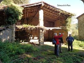 Cabaya
