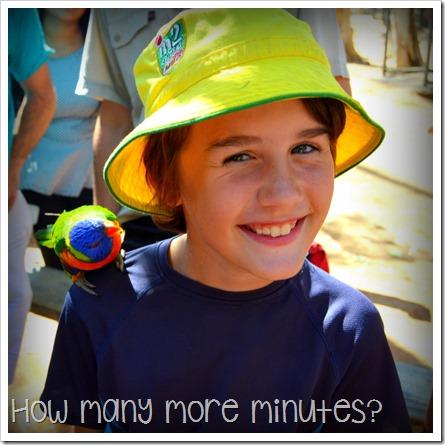 Billabong Sanctuary | How Many More Minutes?