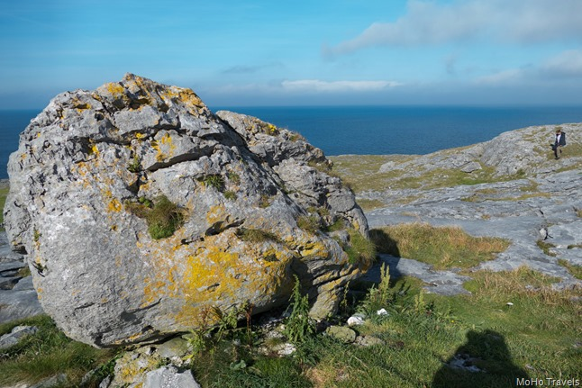 Burren and the Cliffs of Moher (1 of 1)-45