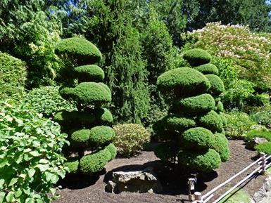 Japanese Garden, Butchart Gardens