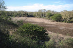 Dry lake – Mkhuze Game Reserve