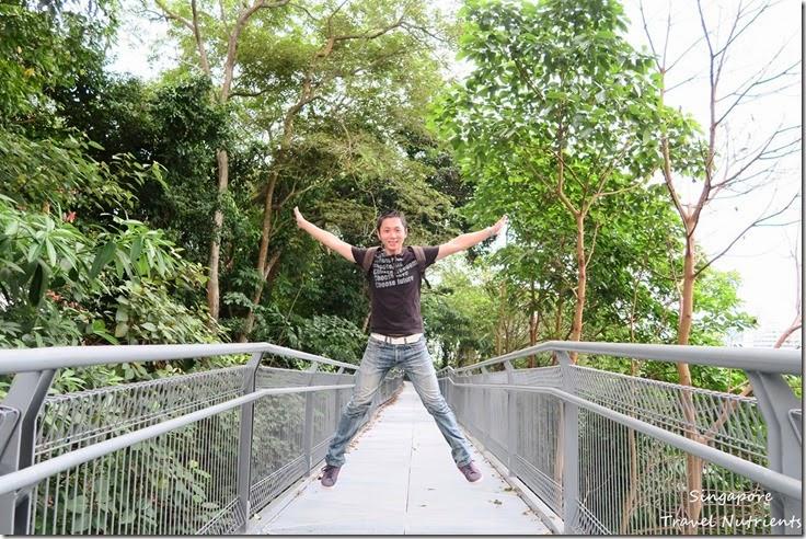 新加坡花柏山 (61)