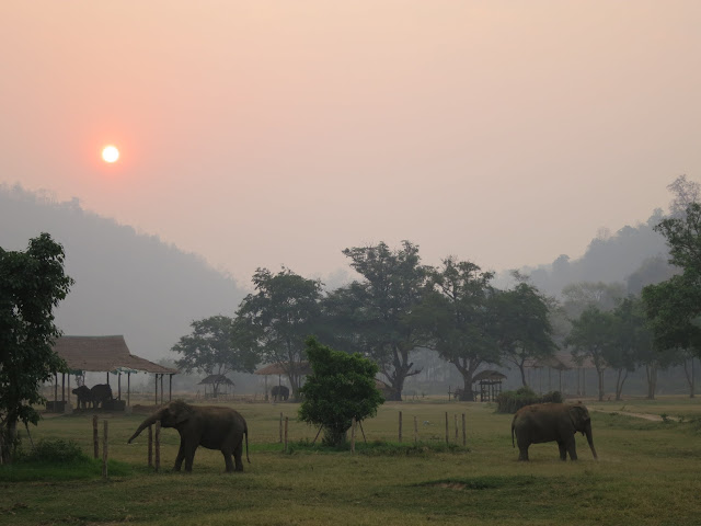 A hazy sunset over Elephant Nature Park.