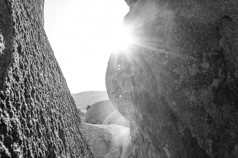 jumping in joshua tree-24