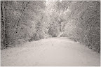 Teufelsmoor - Wintereinbruch im November