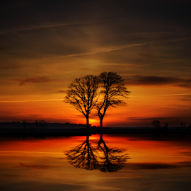 by Laimonas Šepetys - Landscapes Sunsets & Sunrises