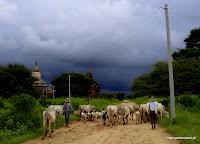 W Bagan życie toczy się powoli,
