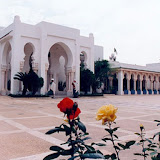 presidence-republique-algerie.jpg