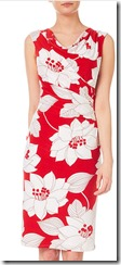Phase Eight rosalie print dress