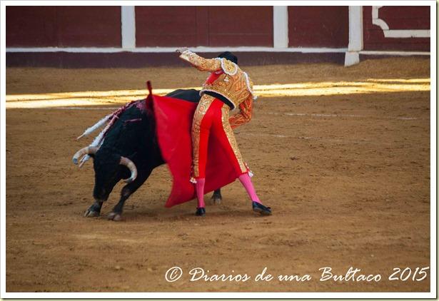 Toros Feria 2015-9796