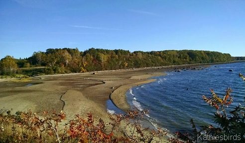 1. MF beach 10-8-15