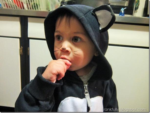 kitty_costume
