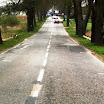 droga 521 - Susz, wjazd do strony Bronowa.jpg