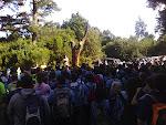 El ingeniero de montes del Cabildo explica a los asistentes por qué se va a reforestar la zona