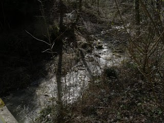 Rivière l'Aubonne depuis l'Arboretum du Vallon de l'Aubonne