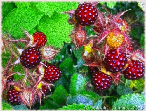 Nigels wineberries