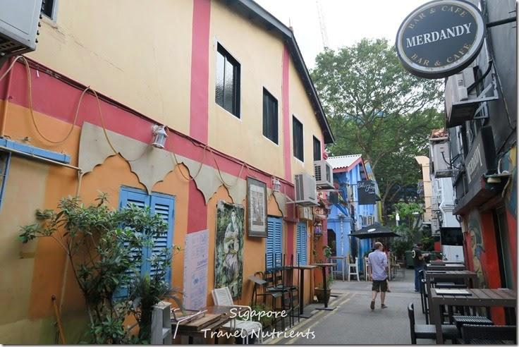 新加坡 哈芝巷 (2)