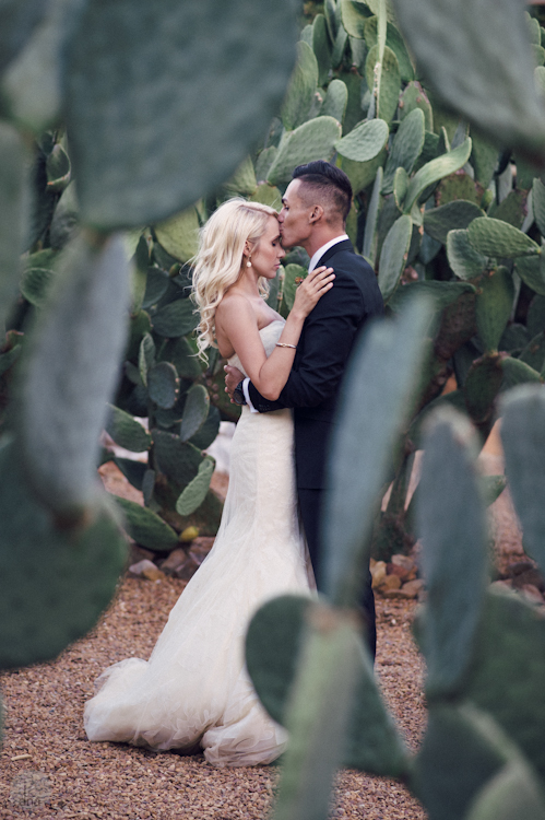Paige and Ty wedding Babylonstoren South Africa shot by dna photographers 322.jpg