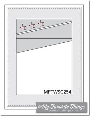 MFT_WSC_254