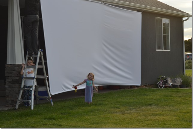 DIY-Massive-Movie-Screen (5)