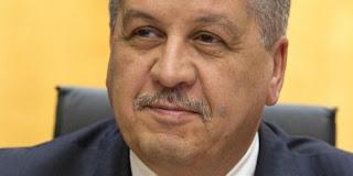 Plan anticrise du gouvernement Sellal , Classe politique et experts sceptiques