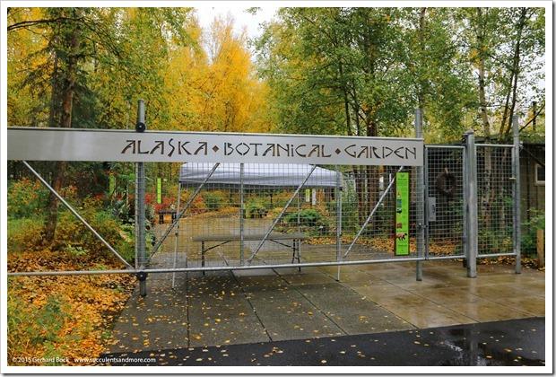 Rainy-day visit to the Alaska Botanical Garden