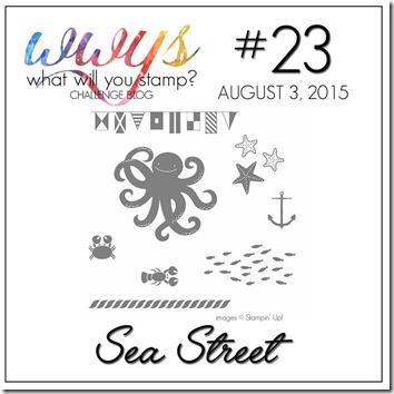 WWYS #23
