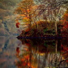 Reflection, Loch Lomond by Craig Skinner - Uncategorized All Uncategorized (  )