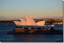 Sydney (11) (Medium)