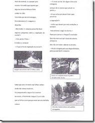 ReportagemBiogeográfica-019