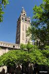 Séville - Giralda