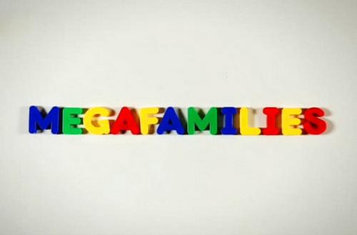 Megarodziny / Megafamilies (2012) PL.TVRip.XviD / Lektor PL