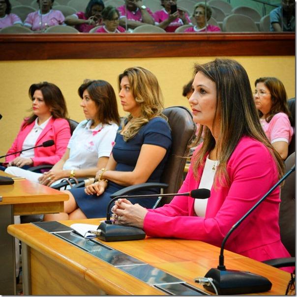 Solene em homenagem aos grupos de apoio às mulheres com  câncer_Aline Bezerra (2)