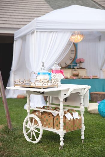 Cinderella Themed Royal Garden Party - Las Vegas www.trishphoto.com  108