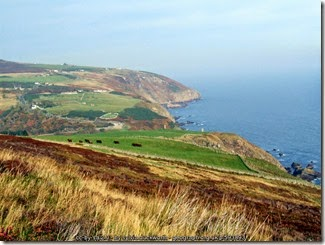 Looking toward Berriedale from Inver Hill