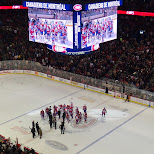canadiens at the bell centre in Montreal, Quebec, Canada