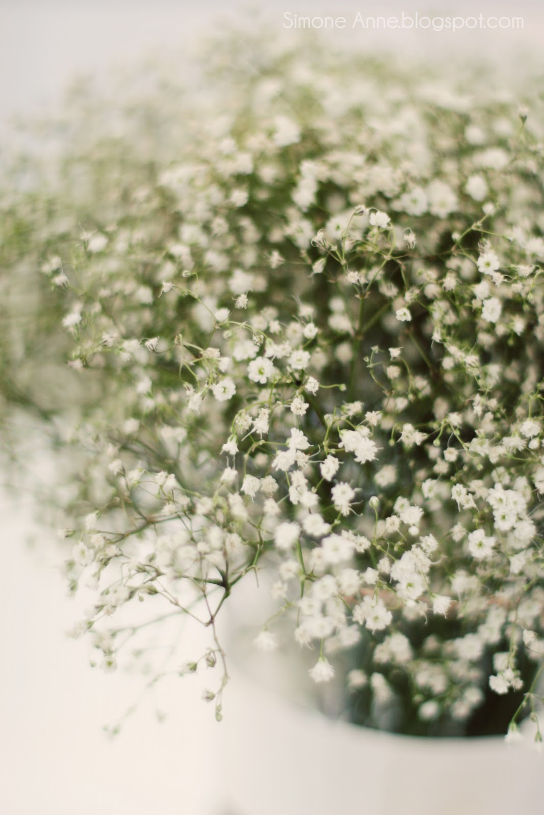 baby s breath wedding